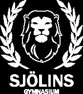 logo-r-sjolins