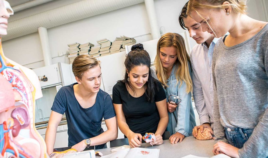 sjölins gymnasium södermalm antagningspoäng 2016
